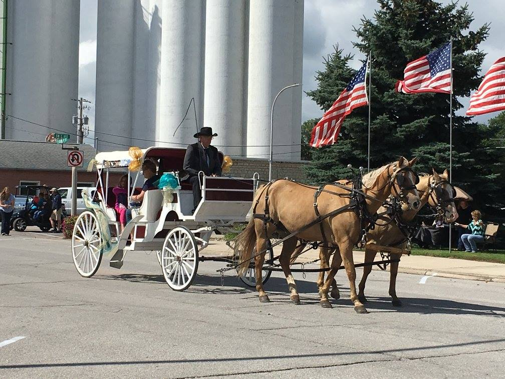 Horse Carriage in Parade during Gilmore City Fun Days 2016
