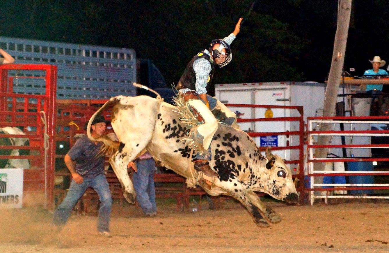 Bull rider at Fonda Labor Day rodeo Photo by Scott Kilbride