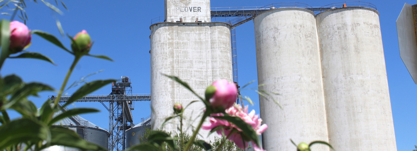 Silos or grain bins in the background; pink flowers in the foreground